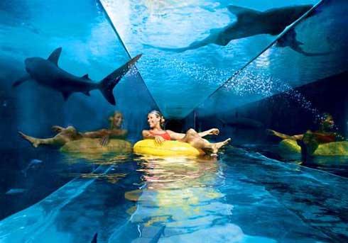 Dubai: Atlantis The Palm, probablemente el hotel más lujoso del mundo 5