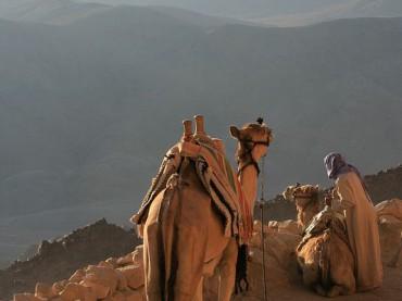 سيناء أرض الفيروز
