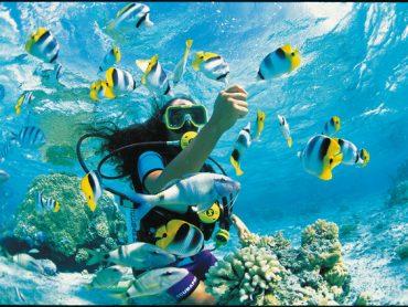 Las siete cosas que no debes perderte de Tahití, si ganas el sorteo de Destinia y Air Tahiti Nui