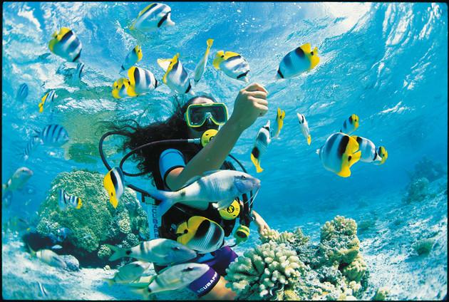 7 Cosas De Tahiti Que No Debes Perderte Con Destinia Y Air
