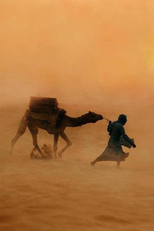 حياة البدو في الصحراء المغربيه 1