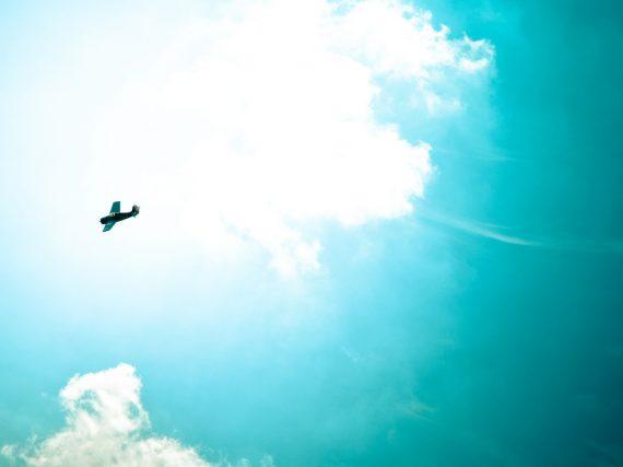 ¡Abre tus alas y supera tu miedo a volar!