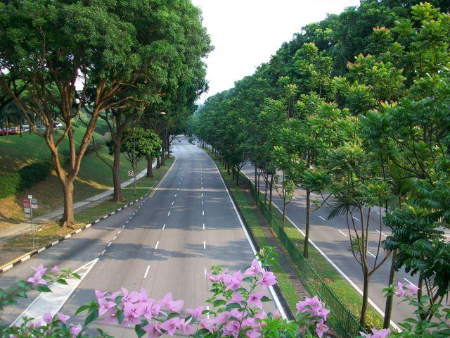 شارع البستان