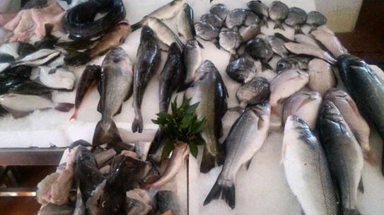 Pescado mercado Caminha Portugal