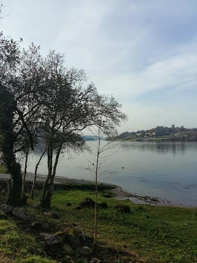 Río Miño Vilanova de Cerveira