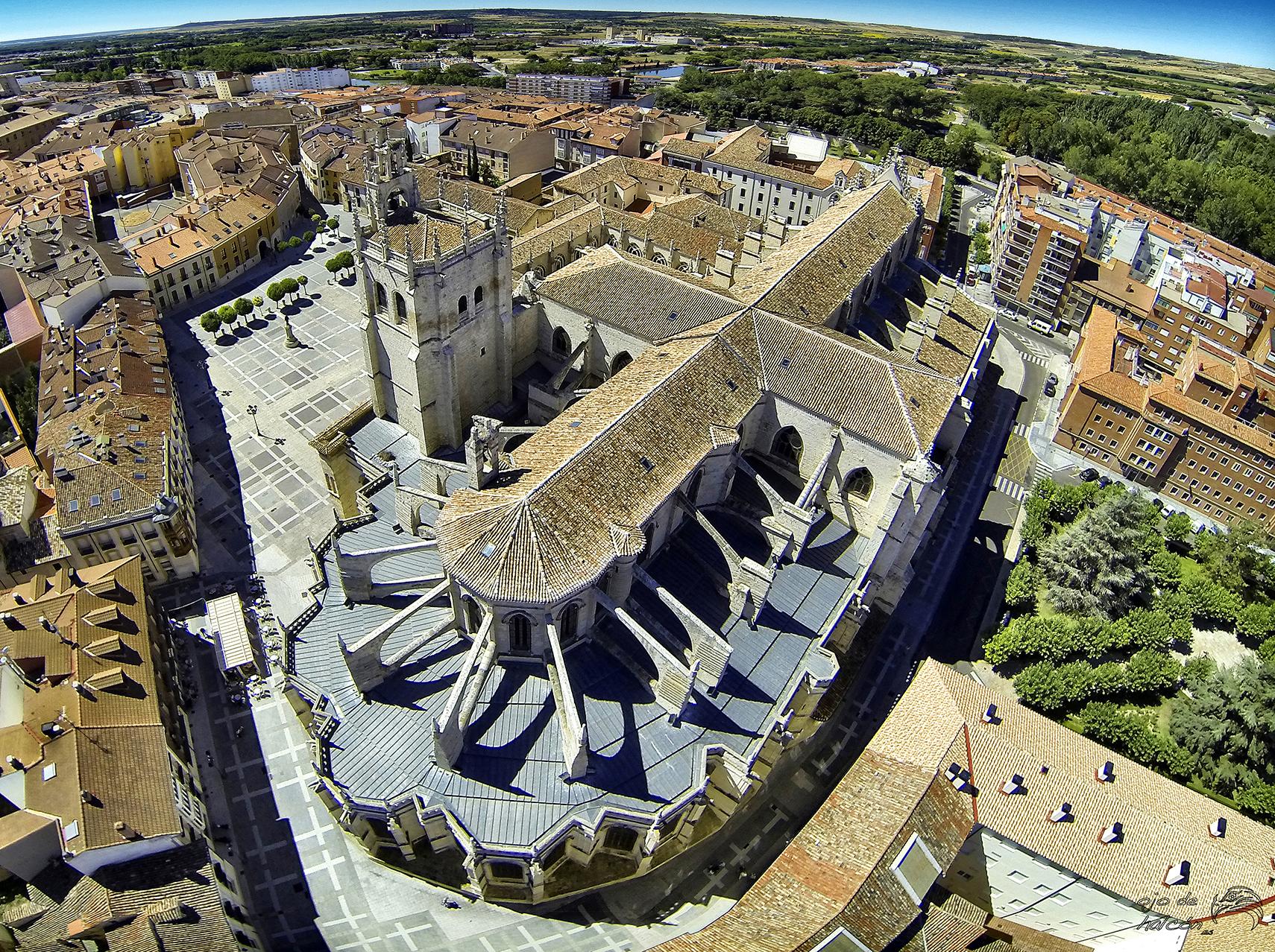 Catedral de Palencia-dron