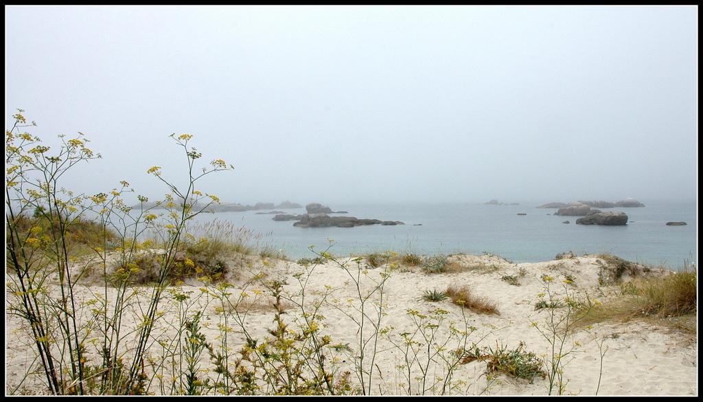 Playa O Carreiro O Grove