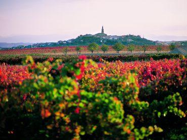 Los pueblos más vinícolas de La Rioja
