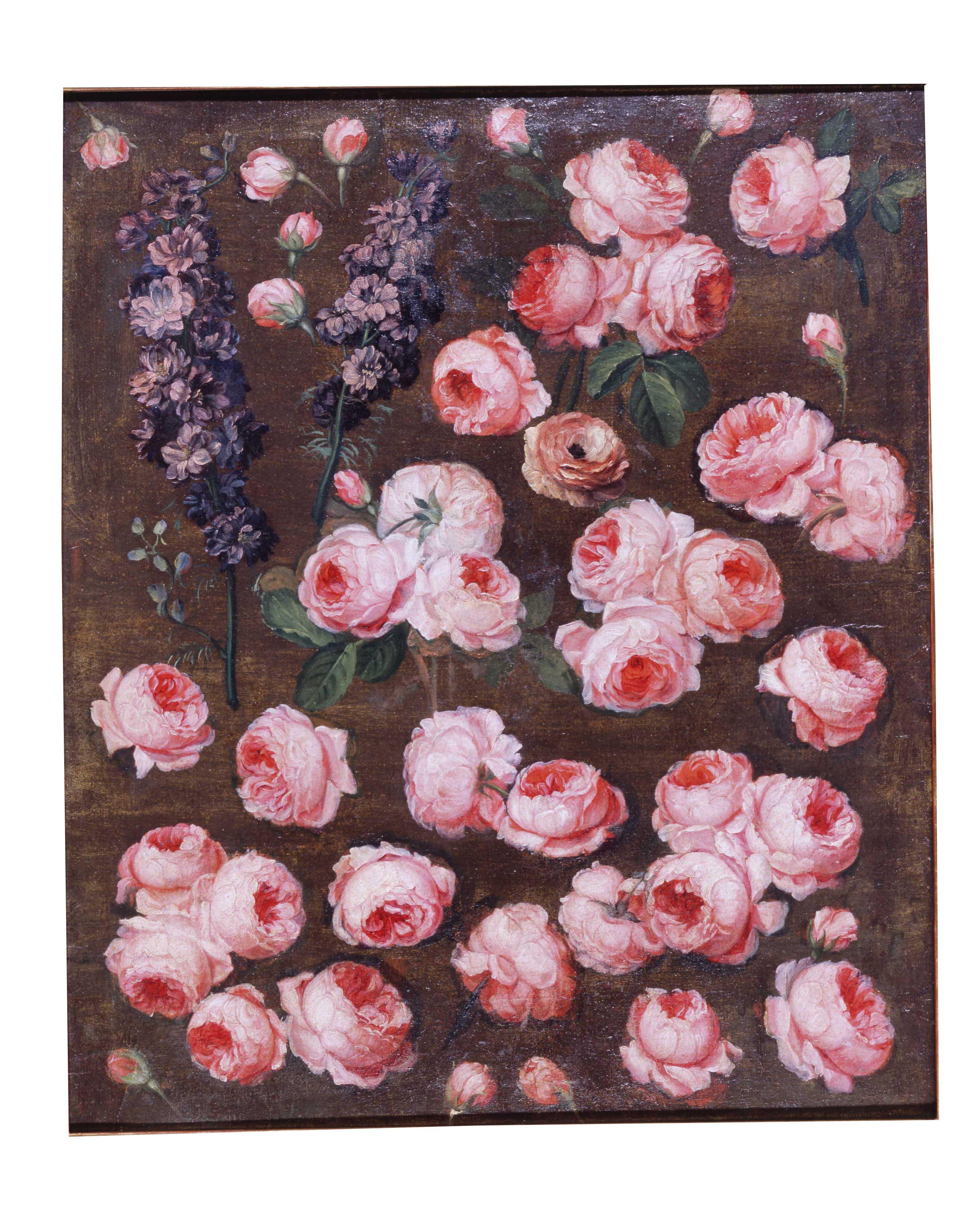 estudio flores, Museo Cerralbo