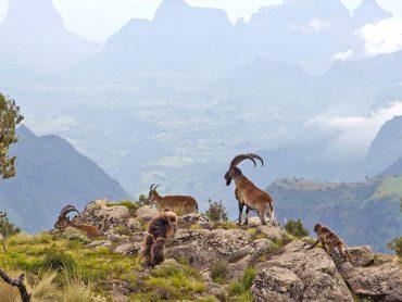 اثيوبيا مغامرة افريقيا التي لا يعرفها الكثيرون