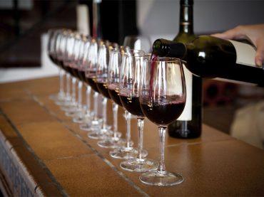La Rioja, de vino en vino