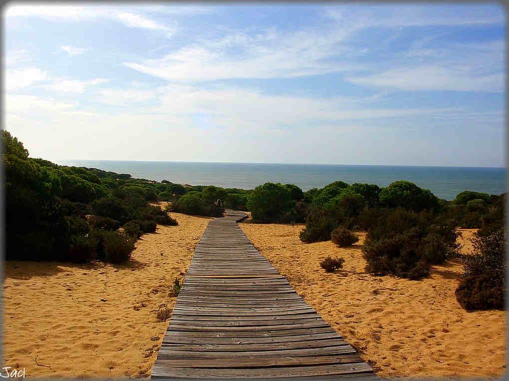 Andalucía-en-verano-Costa-de-la-Luz