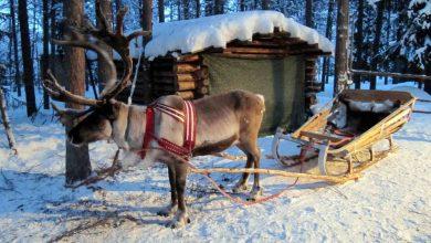 10 planes viajeros en Navidad con niños