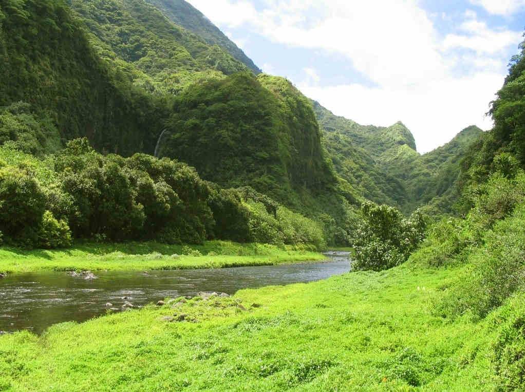 Cómo-moverse-en-Tahití-excursiones