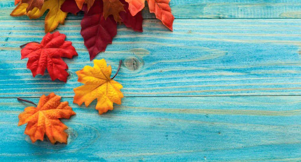 Viajes-octubre-noviembre-Destinia