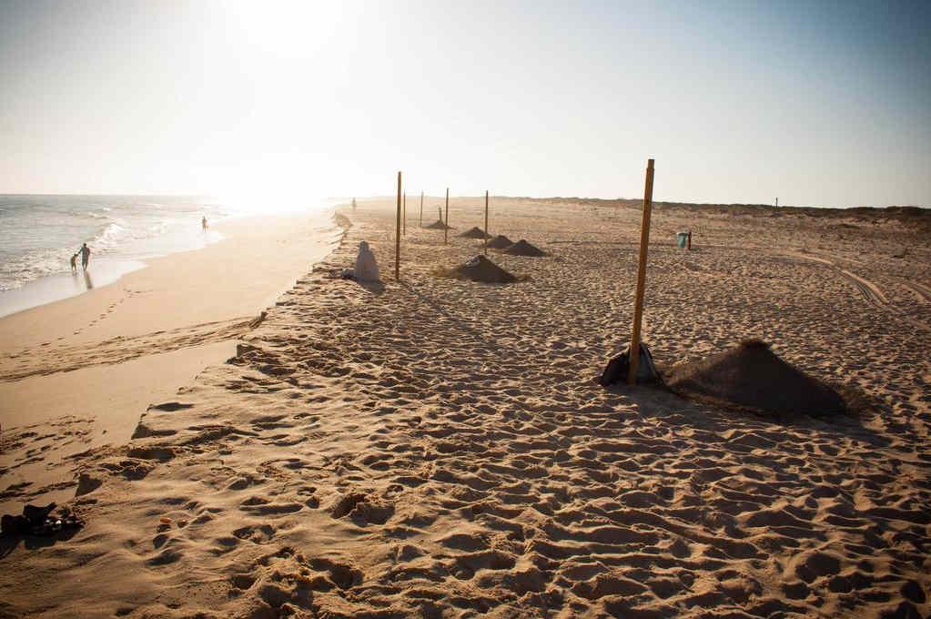 Playas-más-bonitas-del-Algarve-Ria-Formosa