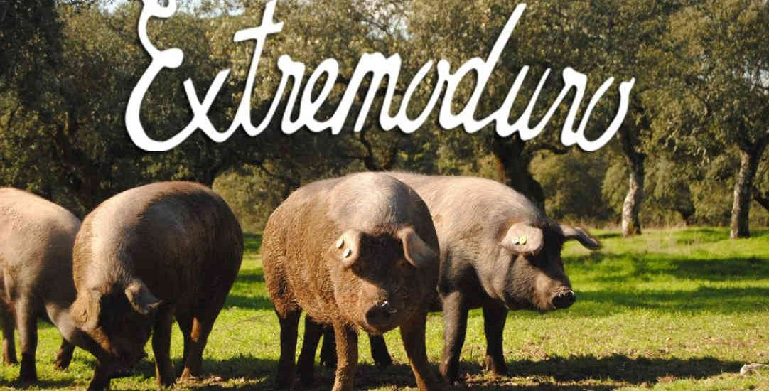 Que-ver-en-Extremadura