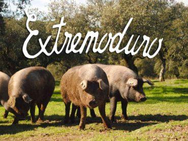 Turismo en Extremadura: de la bellota al jamón al son de Extremoduro