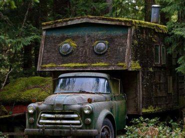 ترافیک تاریخی ماشین ها در جنگل های بلژیک