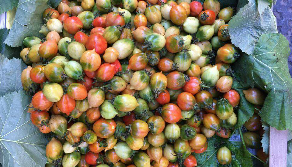 imagen_de_tomates_en_un_mercado