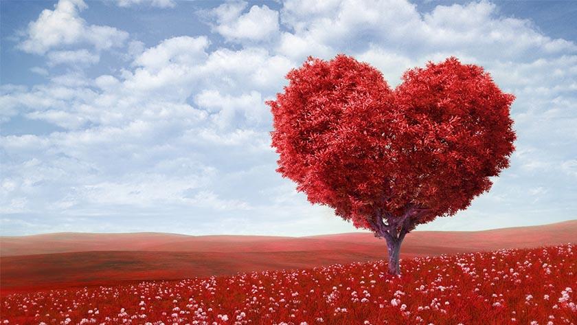 عيد الحب في الهند...رومانسية بوليوود على أرض الواقع 2