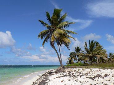 Punta Cana en cinco hoteles para quedarte a vivir