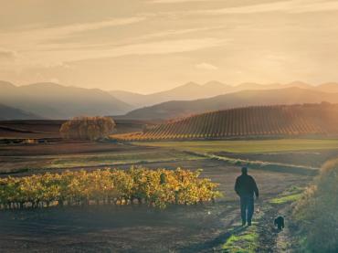 Planes de otoño en La Rioja: mucho más que vino