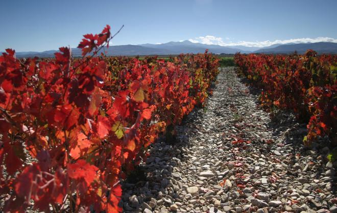 La-Rioja-en-otoño