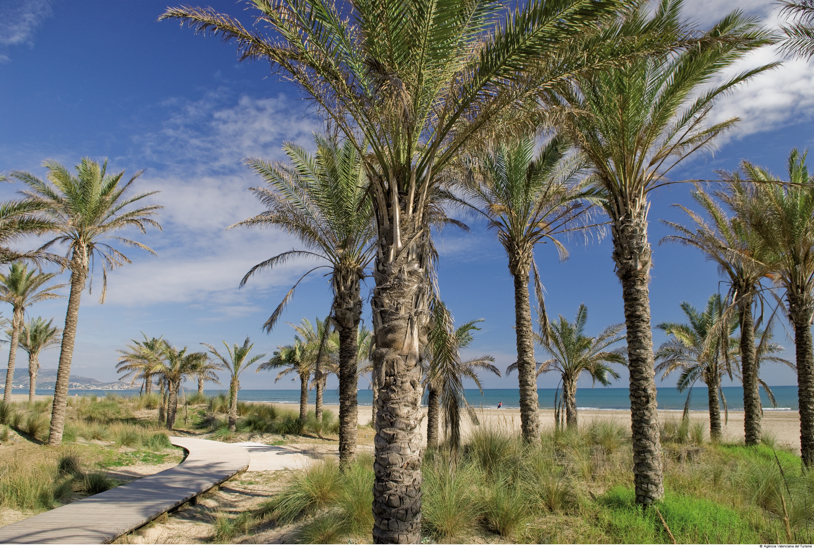 5 razones para acercarse a la fiesta grande de Castellón 4