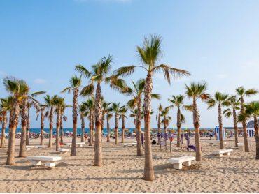 7 lugares de Castellón donde volver a ser niño este verano
