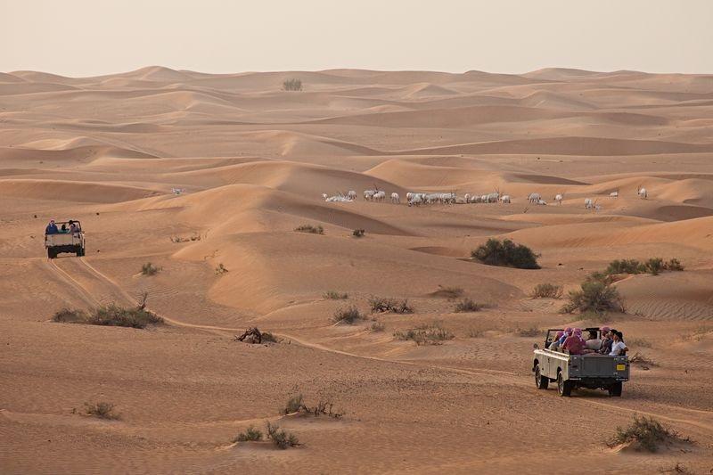 12 consejos para preparar tu viaje a Dubái 8