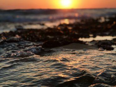 Las calas de Ibiza que no te puedes perder
