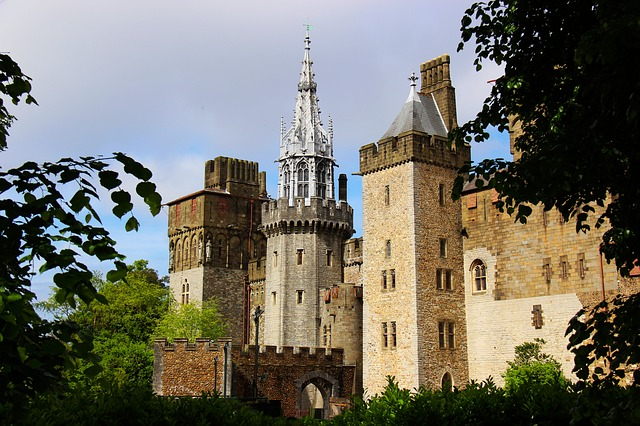 castillo cardiff erasmus