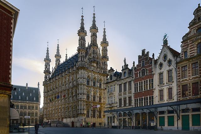 erasmus en belgica