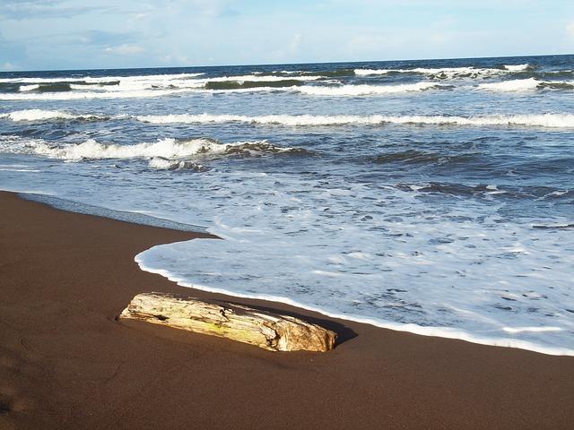 que ver en costa rica tortuguero