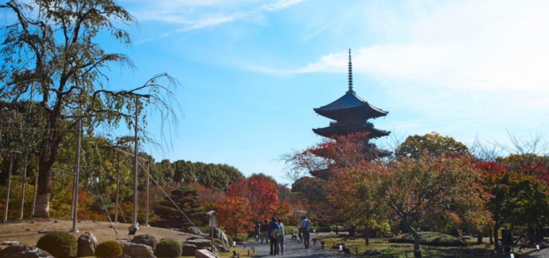 Japón, ¡tienes que ir! 1
