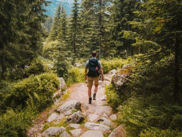 8 Planes para disfrutar de la naturaleza tras el confinamiento