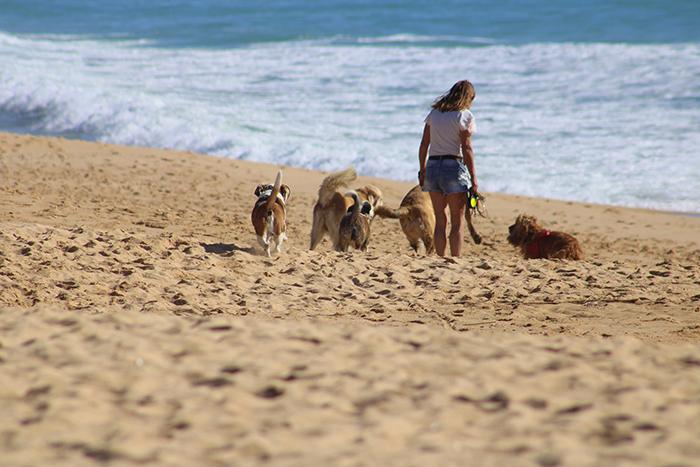 Las mejores playas de Portugal para este verano 2