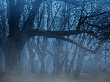 Toma nota de dónde se rodó la serie Dark y visita estas localizaciones en tus vacaciones
