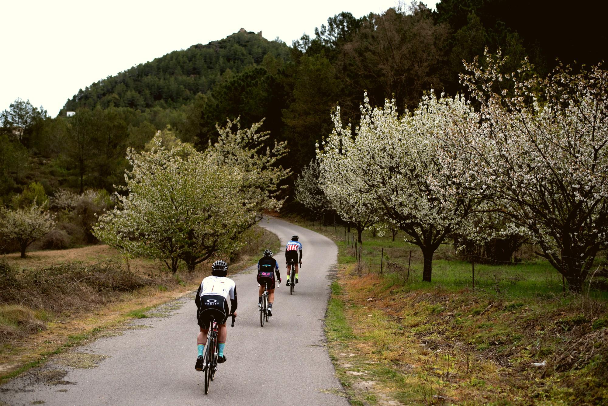 castellon-escenario-perfecto-para-disfrutar-de-la-bicicleta