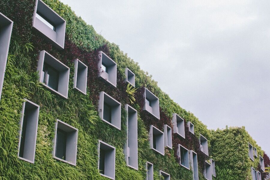 Fachada de hotel sostenible, con vegetación y ventanas de diferentes tamaños.