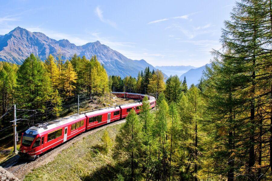 Tren rojo y blanco atravesando la naturaleza.